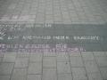 8. Mahnwache für Frieden und Freiheit Cottbus (27)