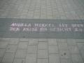 8. Mahnwache für Frieden und Freiheit Cottbus (34)