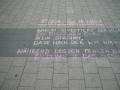 8. Mahnwache für Frieden und Freiheit Cottbus (40)